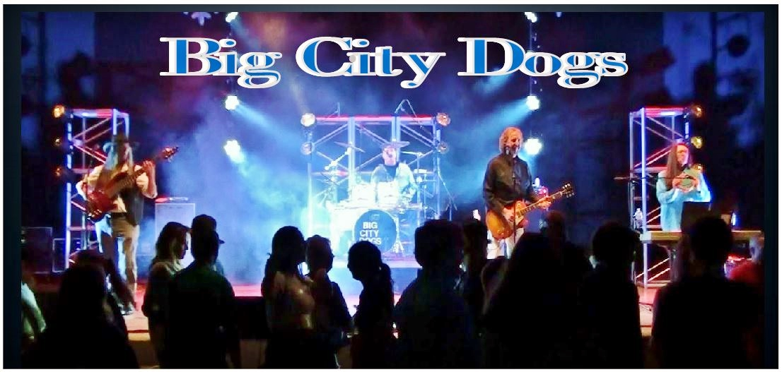 Big City Dogs